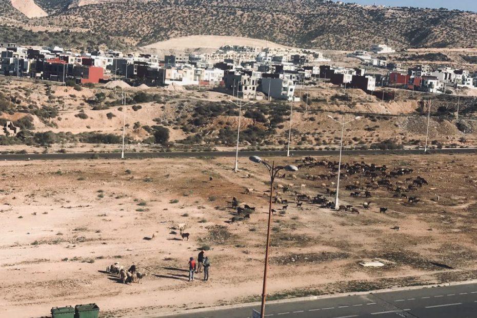 Agadir wycieczki